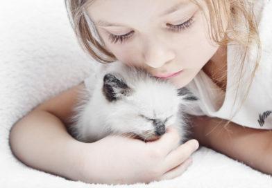 Покупка домашнего животного для ребенка